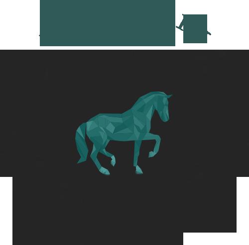 Equi-Jolin | Paardenosteopathie